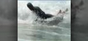 Do the reverse spin for bodyboarding