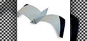 Origami a sea gull Japanese style