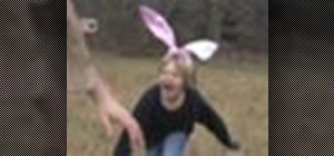 Take pictures of wild animals