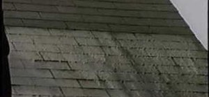 Remove algae stains from roof shingles