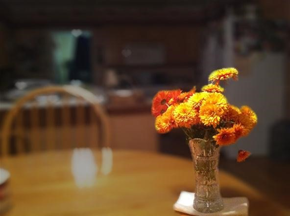 Bokeh Photography Challenge: Mums
