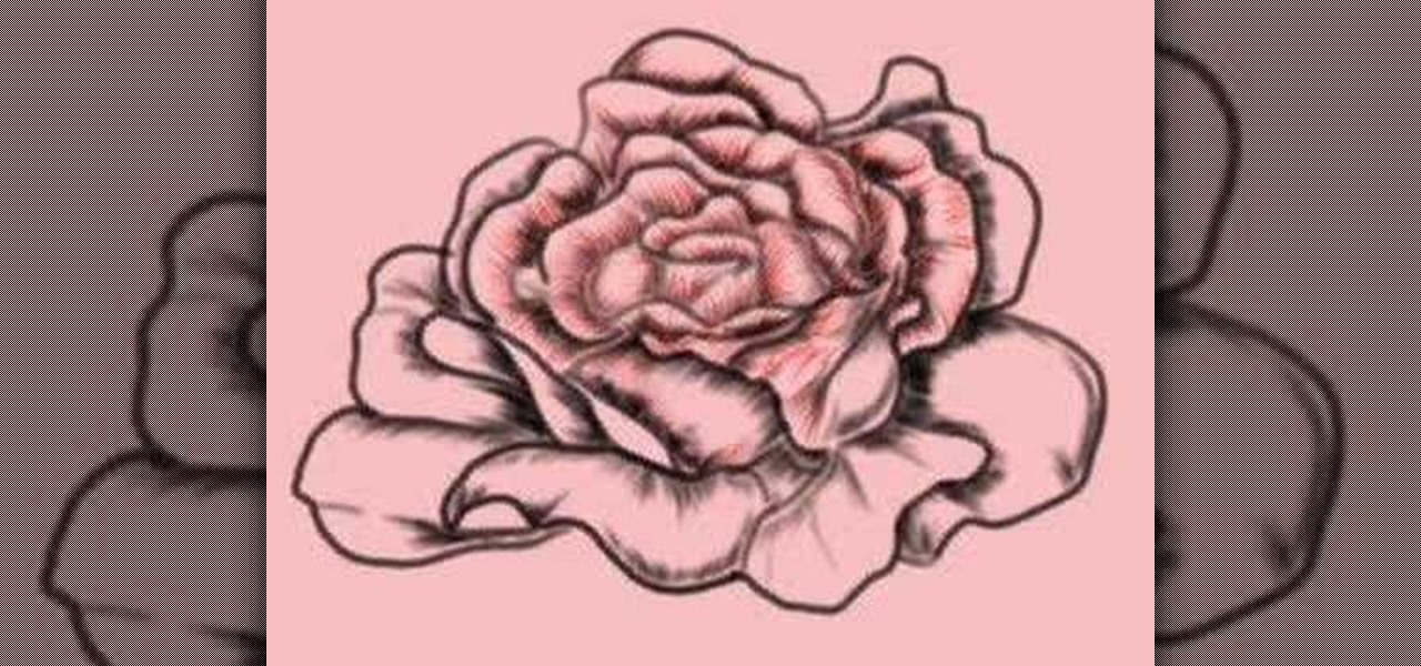 How to draw a gorgeous realistic rose step by step drawing how to draw a gorgeous realistic rose step by step drawing illustration wonderhowto ccuart Choice Image