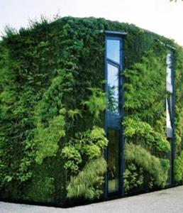 The Green House - Vertical Gardening Exterior Walls