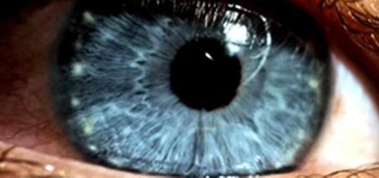 Build Your Own DIY SuperMacro Lens