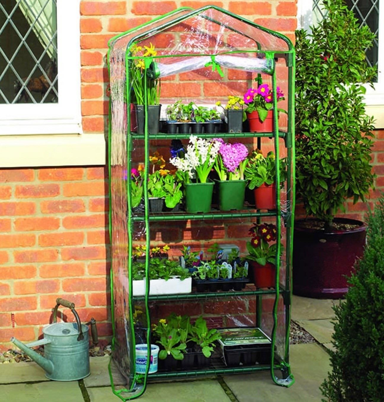 Grow Fresh Herbs & Veggies Indoors with a Tabletop Greenhouse