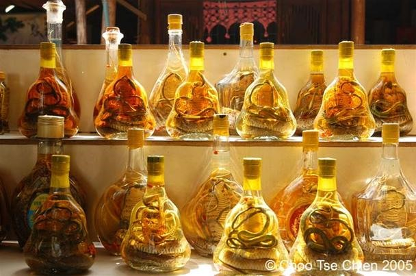 How to Make the Medicinal Aphrodisiac Snake Wine