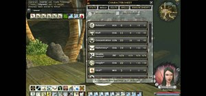 Change the User Interface skins in your Dungeons & Dragons Online game