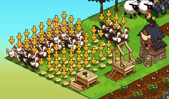 Goal: Chickens