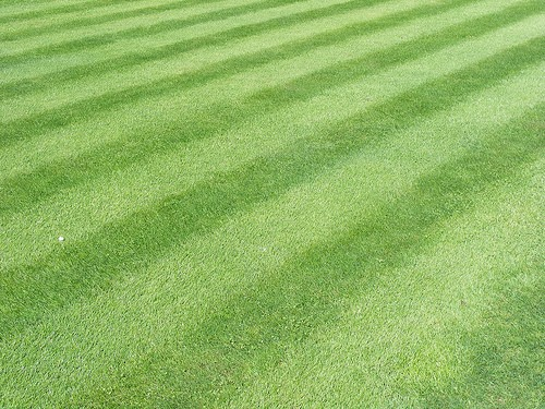 Mow Your Lawn Just Like Wrigley Field
