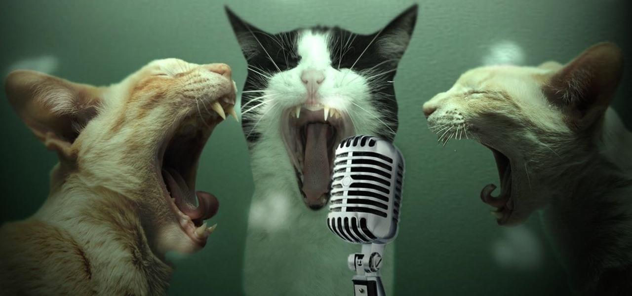 How To Use Your Chromecast As A Karaoke Machine 171 Cord Cutters