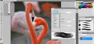 Use natural media brushes in Adobe Photoshop CS5