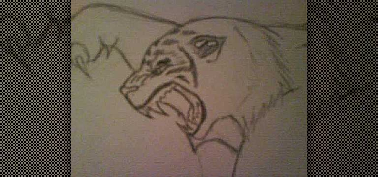 How to Draw an angry tiger « Drawing & Illustration ...