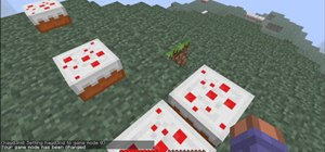 minecraft survival and creative