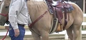 Fit a breast collar and back cinch on your horse