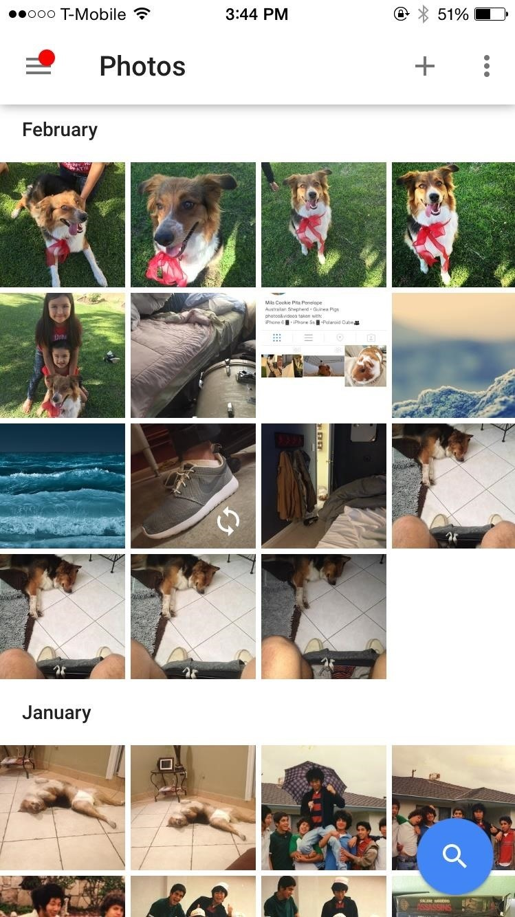 Google Photos: How to Transfer Pictures from Facebook, Dropbox, Instagram, Flickr, & More