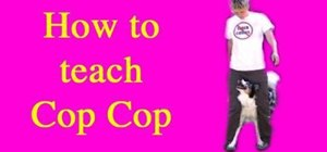 "Train your dog to perform the ""cop-cop"" trick"