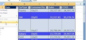 Filter data in eight different ways in Microsoft Excel