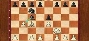 Use the Evans gambit opening in chess