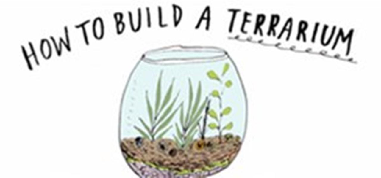 build-your-own-terrarium.1280x600.jpg