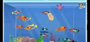 Hack Happy Aquarium for EXP with CE 5.5 (01/11/ 10)
