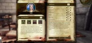 Reassign your stats in Dragon Age: Origins with a glitch