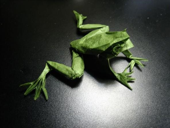 Engineer By Day, Origami Master By Night