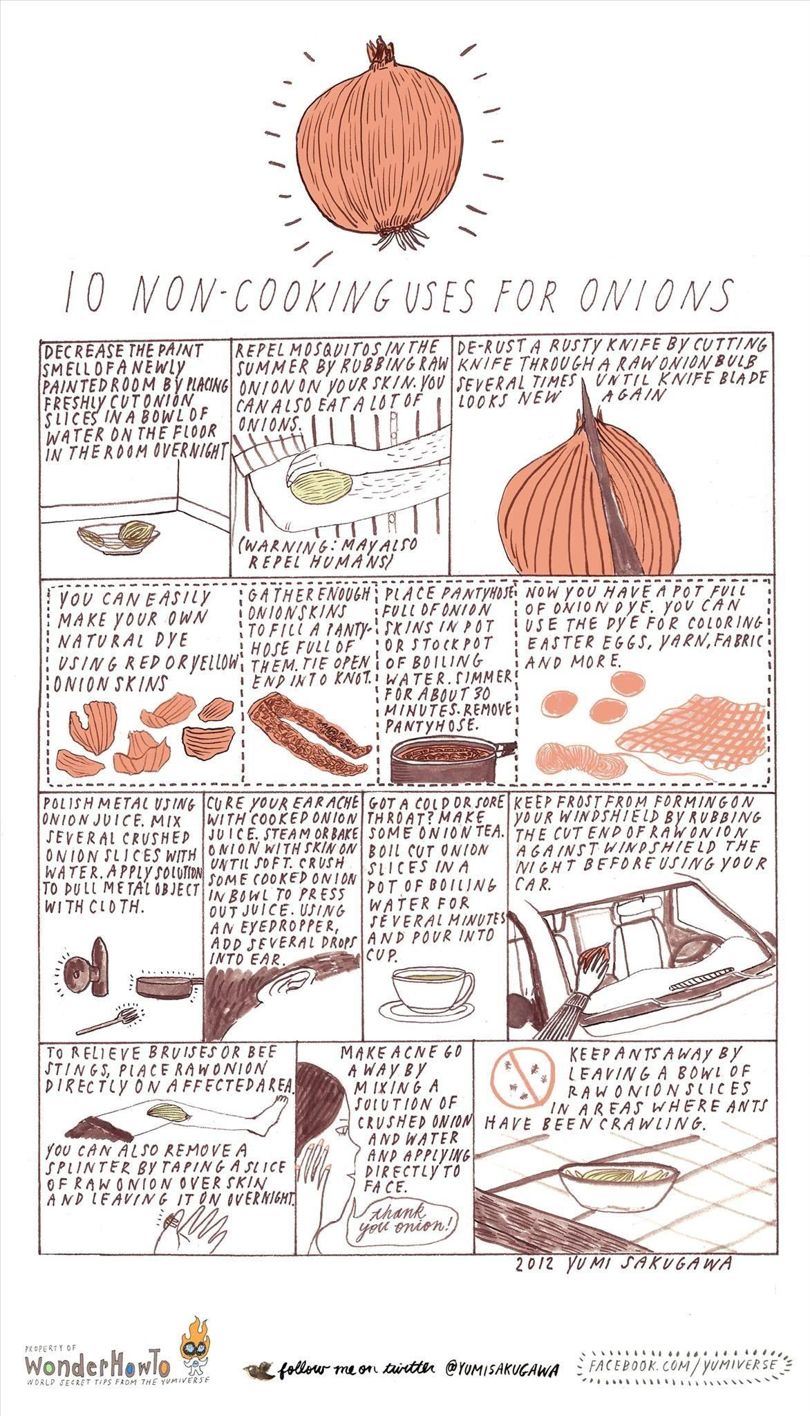 10 Non-Cooking Uses for Onions