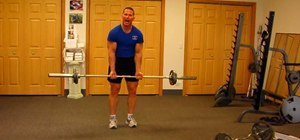 Build your arms with the straight bar barbell curl