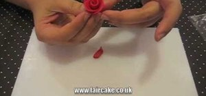 Sculpt beautiful minature edible roses for cake decorating