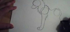 Draw a basic wolf using simple shapes