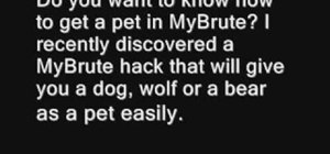 Get a pet dog, wolf or bear in MyBrute (06/02/09)