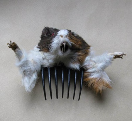 Stomach Churning Taxidermy Fashion