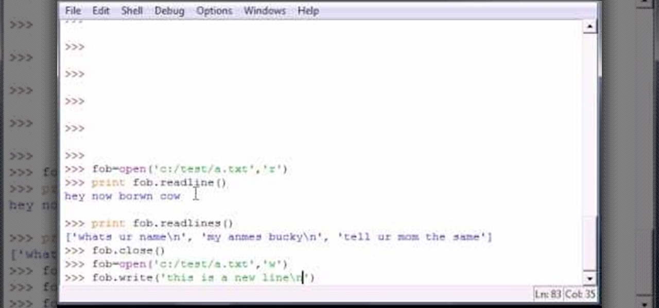 Read write a file in python