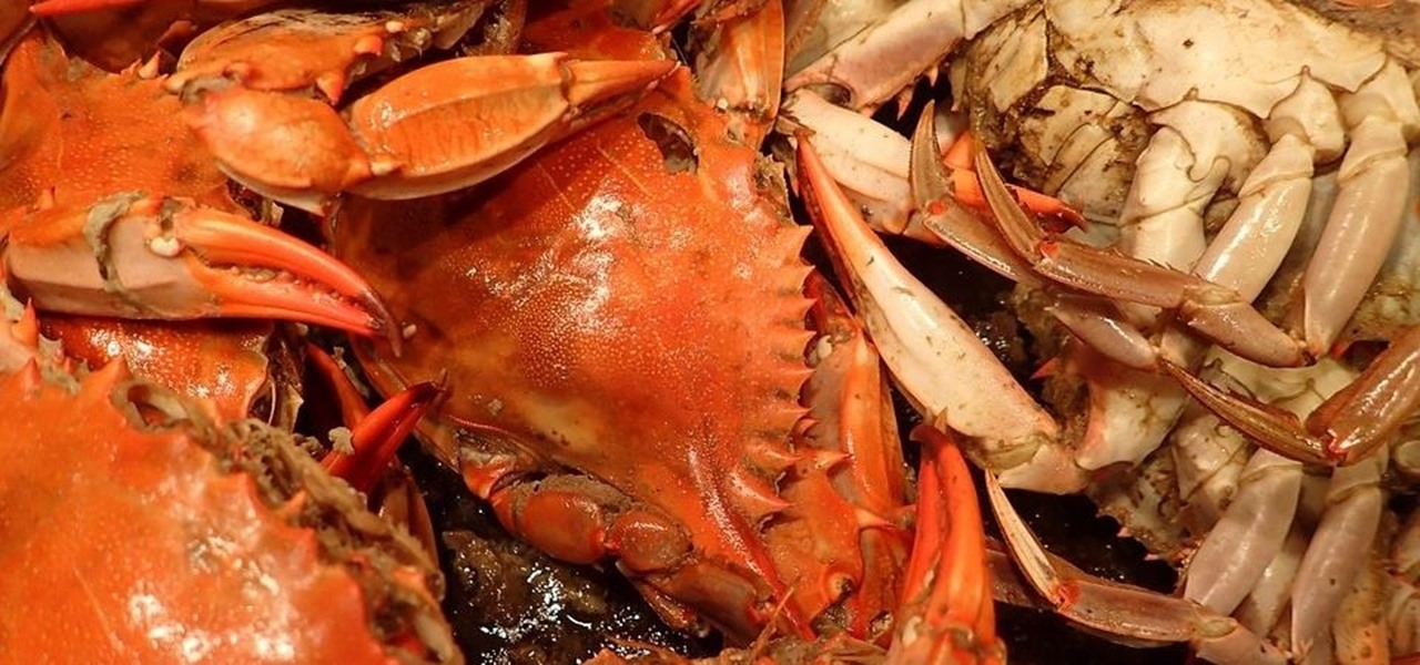Imported Seafood & Produce Bring Along a Spike in Deadly Food-Borne Outbreaks