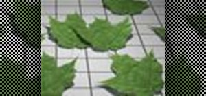 Create a realistic leaf animation in 3ds Max
