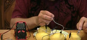 Power an electronic device with a lemon
