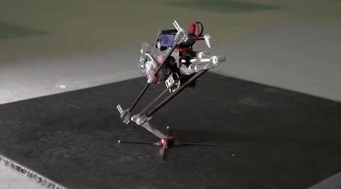 Meet SALTO, UC Berkeley's Bushbaby-Inspired Robot with Insane Leaping Skills