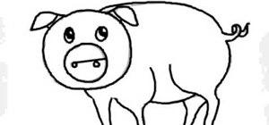 Draw a cartoon pig