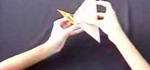 Origami a wild duck