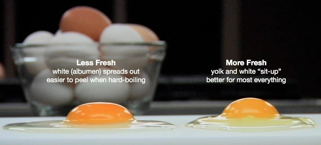 How to Tell if Your 'Expired' Eggs Are Still Good to Eat