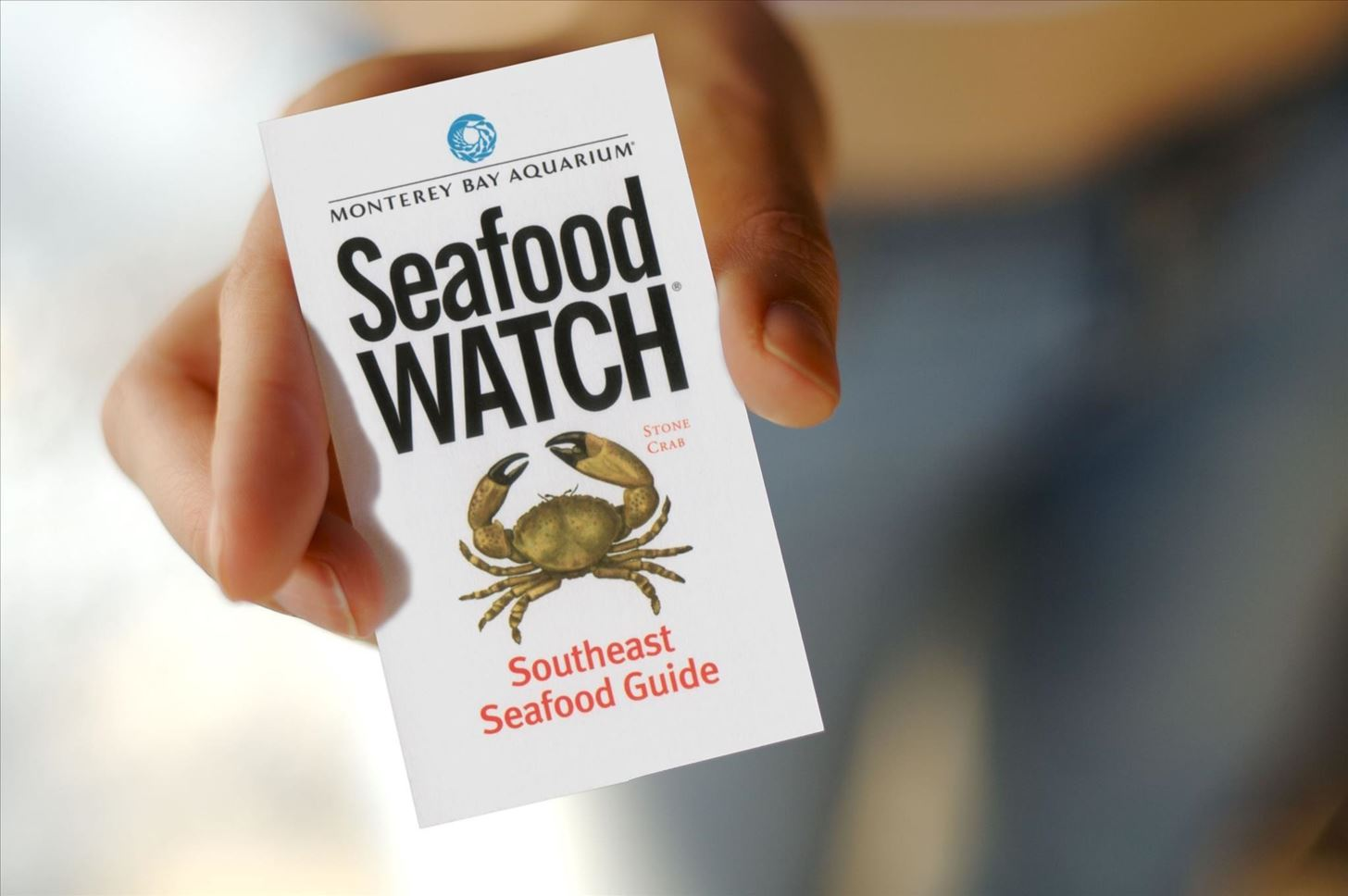 Sustainable Seafood: The Food Hacks Guide to Doing It Right