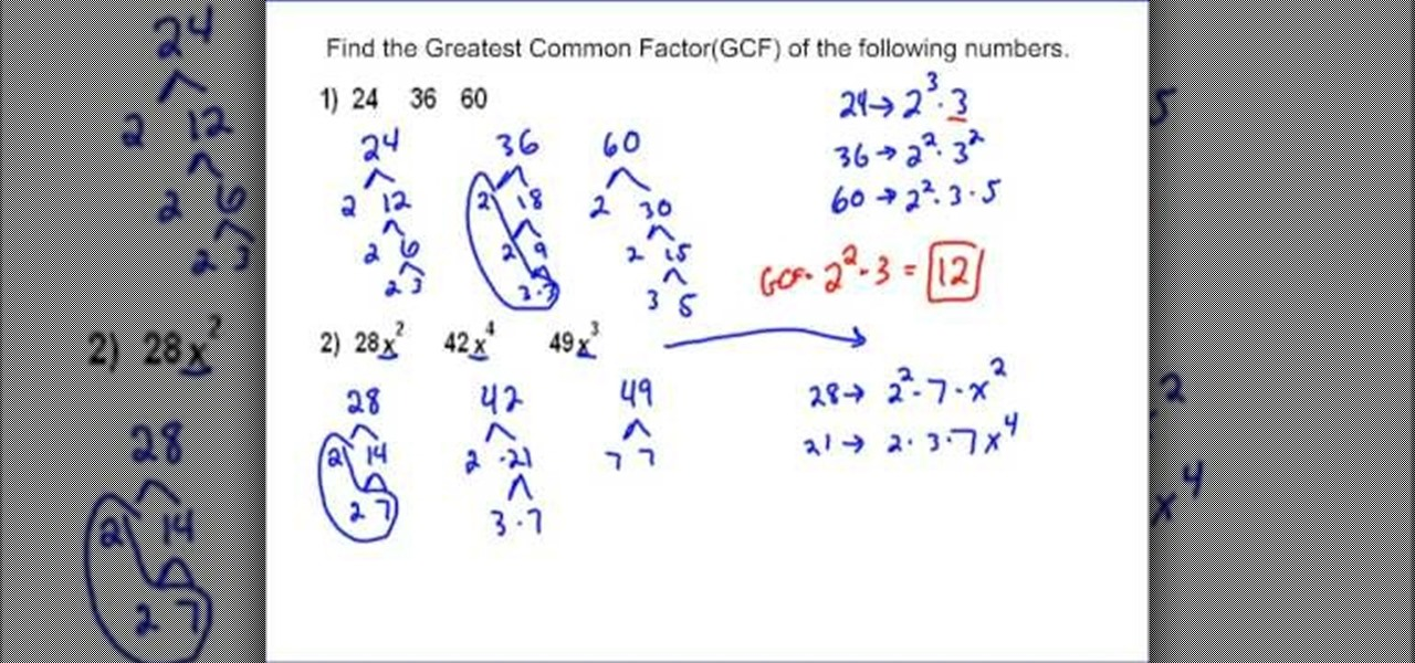 How to Calculate the greatest common factor of a set of terms ...