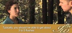 Grow mushrooms in your home garden