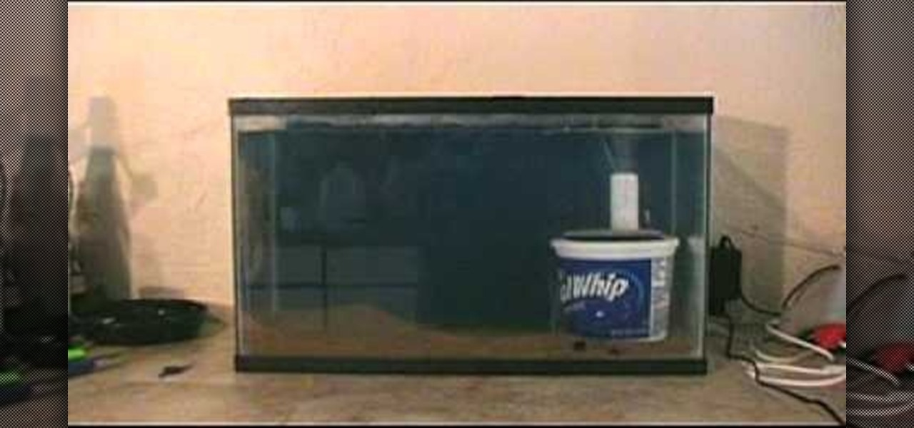 How to Make a homemade fish aquarium filter « Fish