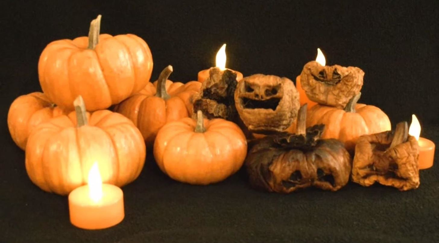 how to carve char contort a creepy miniature jack o 39 lantern for halloween halloween ideas. Black Bedroom Furniture Sets. Home Design Ideas