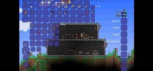 Bring a Merchant to your house in Terraria