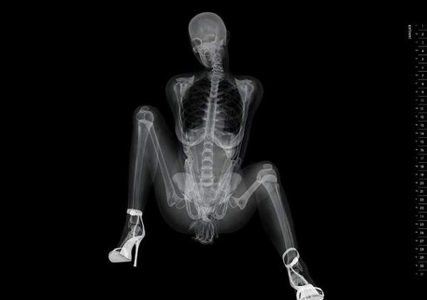 Hubba, Hubba. I Like My Ladies X-Rayed