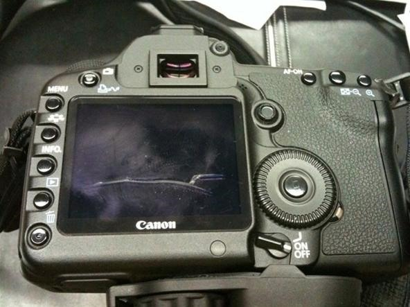 Replace the LCD cover on a Canon 5D