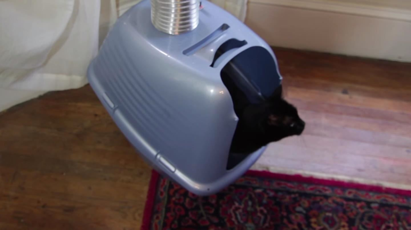 How to Build a Self-Ventilating Litter Box for Your Cat