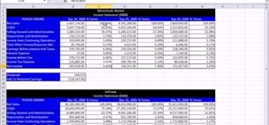 create common sized financial statements in microsoft excel